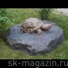Престиж Черепаха  D120
